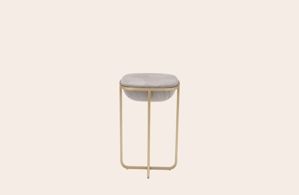 Carapace occasional table