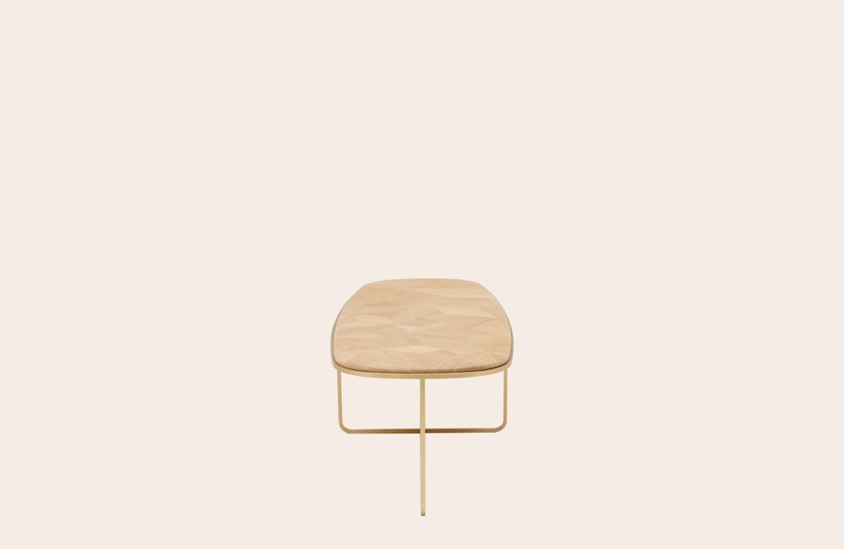 Carapace Low Table
